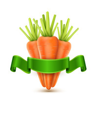 vector three carrots isolated on white background with green rib