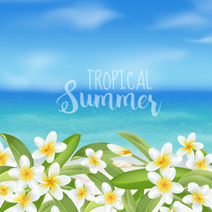 Tropical Background. Tropical Flower Plumeria. Sea View Background