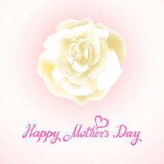 Happy Mothers Day Beautiful Blooming whire Rose Flowers on White Background. Greeting Card