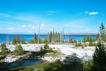 View of the Yellowstone Lake from the West Thumb Geyser Basin, Yellowstone National Park, Wyoming, USA
