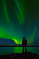 Silhouette of person looking at aurora borealis