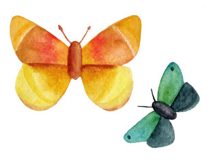 Two watercolor butterflies, golden yellow and green blue, on white