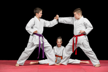 Group kids Karate martial Arts