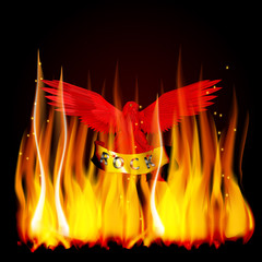 red eagle fire