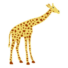 of a cute giraffe