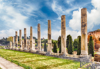 Wall Mural - Ancient columns of the Temple of Venus, Rome, Italy