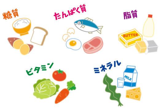 栄養素 五大