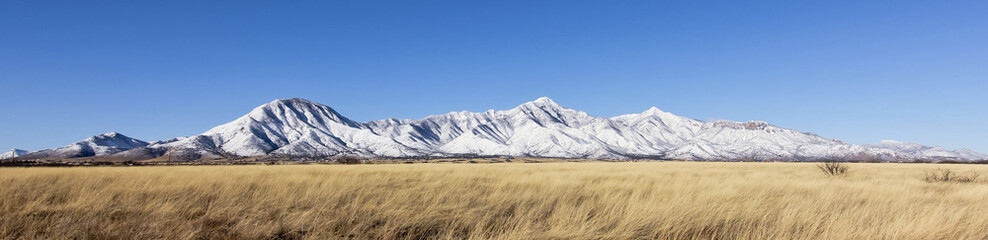 A Panorama of the Snowy Huachuca Mountains
