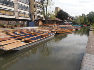 Poster Channel Punts On A River