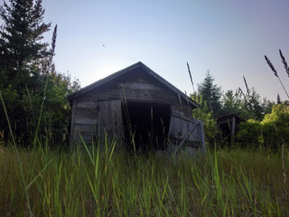 Creepy abandoned wooden shack in overgrown grass at dusk - landscape color photo