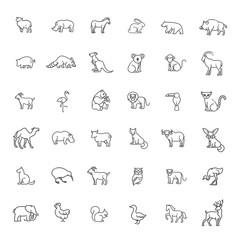 animal icons. Zoo icons. Animals