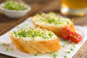 Baguette slices spread with cream cheese and sprinkled with alfalfa sprouts  on sandwich paper (Selective Focus, Focus on the front of the cream cheese and sprouts on the first baguette slice)
