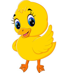 illustration of Cute baby duck cartoon