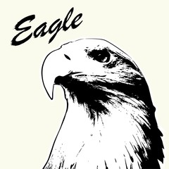 Eagle head hand drawn. Eagle sketch isolated background. Stylized haired inscription Eagle.