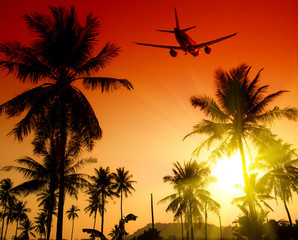 Coconut palms tree and airplane on red and yellow sky background