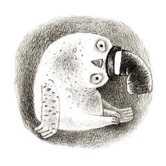 Snowy Owl in a Cylinder
