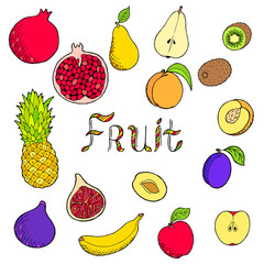 Fruit food graphic art set color isolated illustration vector