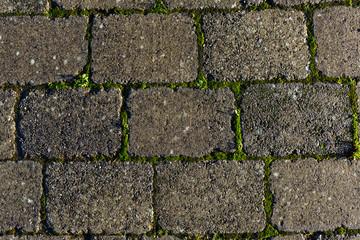 Stone pathway texture