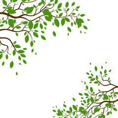 Vector Illustration of a Nature Background with Green Leaves