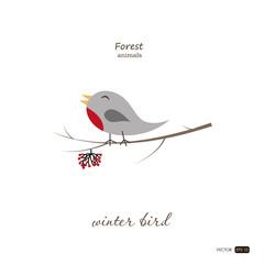 Winter bird in cartoon style on white background. Forest animals