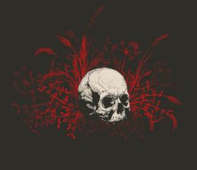 Skull surrounded by a field of grass.