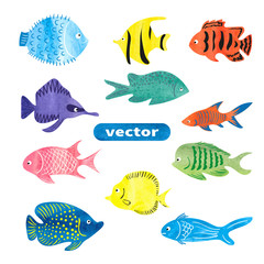 Fish set. Collection of colorful watercolor sea fish isolated on white background. Vector illustration.