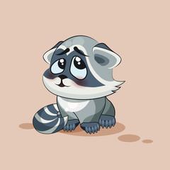 Raccoon cub confused