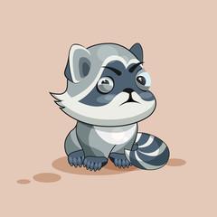 Raccoon cub squints