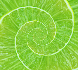 Spiral background made of juicy lime