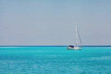 white speedboat yacht  in blue ocean