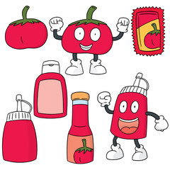 vector set of tomato and tomato sauce
