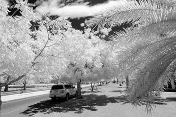 Infrared photograph in black and white of a car parkedon  an emp