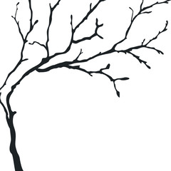 Black silhouette of a bare tree