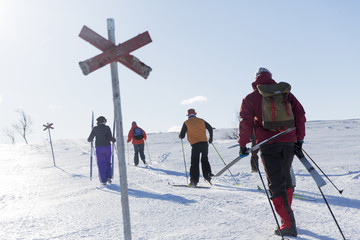 People practicing cross-country skiing