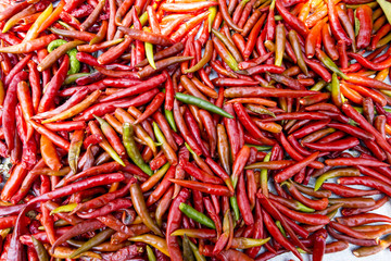 Red Chillies style nature