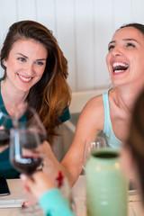 Friends having fun, drinking wine