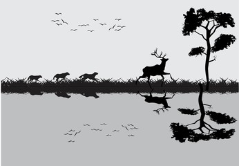 Running deers on the river coast, and their reflected silhouettes on water