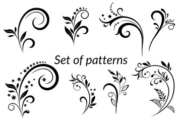 Set of Vintage Calligraphic Elements, Floral Patterns Black Silhouettes Isolated on White Background. Vector