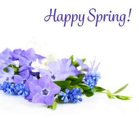 Purple periwinkle and spring text isolated on white
