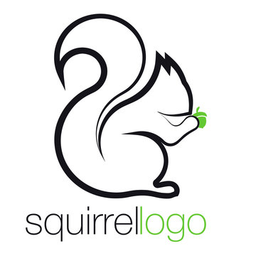 Squirrel Logo. Outline Squirrel. Template Logo Company