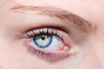 Mirada de ojo azul / jara 4468