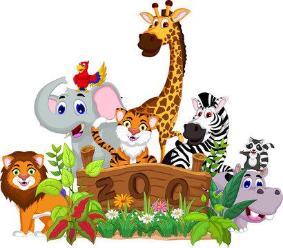 zoo and the animal cartoon