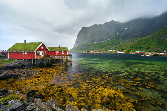 Amazing view of Reine - fishing village with red houses near fjord and green mountains. Beauty of Hamnoya, Lofoten islands, Norway