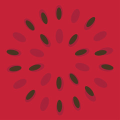 Fresh ripe watermelon