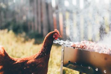 Chicken carefully looks like fried kebab. Outdoors photo.