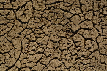 Scorched Ground. Dead Sand Surface. Ecological Catastrophe on the Earth.
