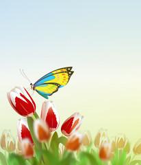 Butterfly on flower. Vector Illustration