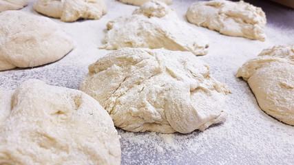 Wheat bread dough