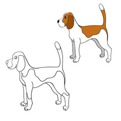 Cute cartoon contour beagle isolated on white background