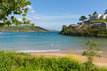 Wall Mural - South sands beach Salcombe Devon UK beach in the estuary in summer